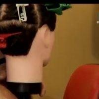 división partes de la cabeza- curso de peluqueria online - clase 1