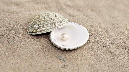 polvo de perla