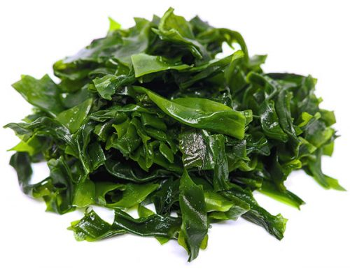 ingrediente shampoo aussie alga kelp