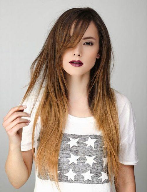 Peinados pelo liso 11